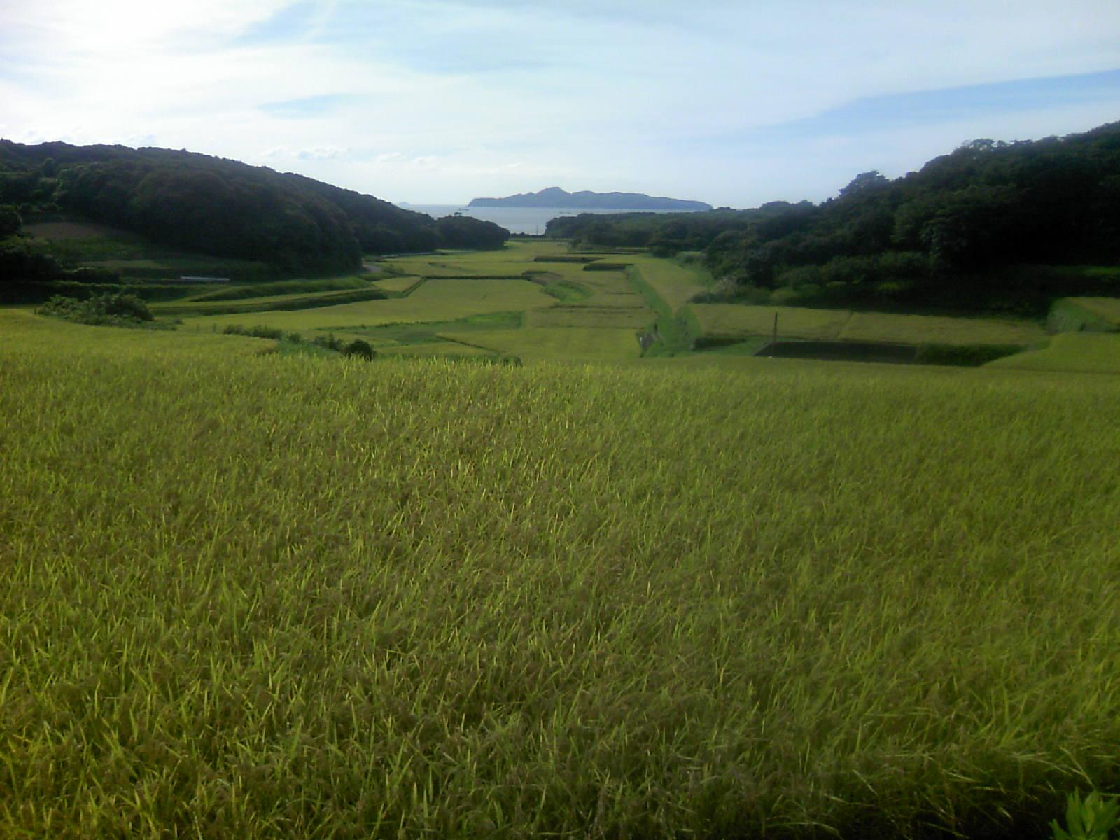 鎮西町名護屋城近くから馬渡島を望む
