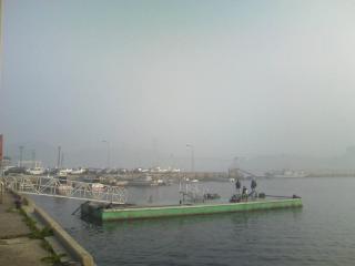 霧の名護屋湾