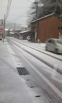 大雪2009/1/24